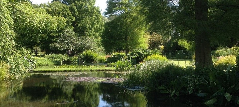 Photo of Beth Chatto Gardens.