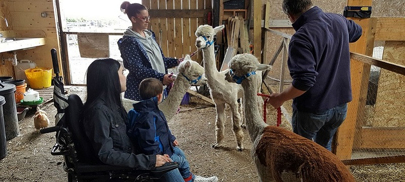 Photo of a reviewer at the Alpaca Trekking Centre.