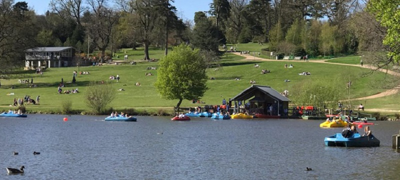 Photo of the boating lake in Dunorlan Park.