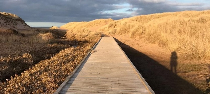 Photo of a boardwalk to the beach.