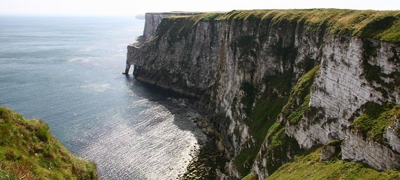 Photo of RSPB Bempton Cliffs.