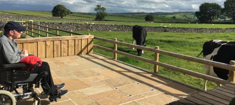 Photo of a guest watching cows at Hope Cross Cottage.