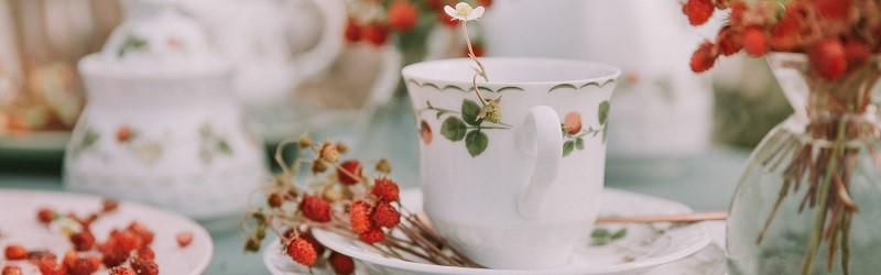 Photo of a tea cup with a flower inside and surrounded by dried strawberries.
