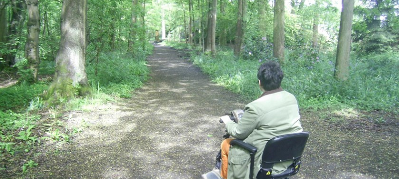Photo of an accessible woodland path at Moorlands Nature Reserve.