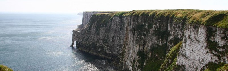 Photo of Bempton Cliffs.