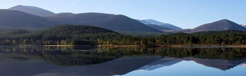 Photo of the Cairngorms National Park.