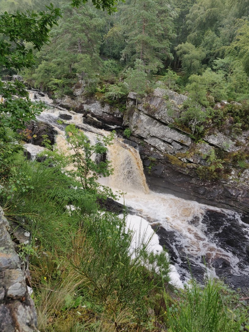 Rogie Falls with Disabled Access - Strathpeffer - Euan's Guide