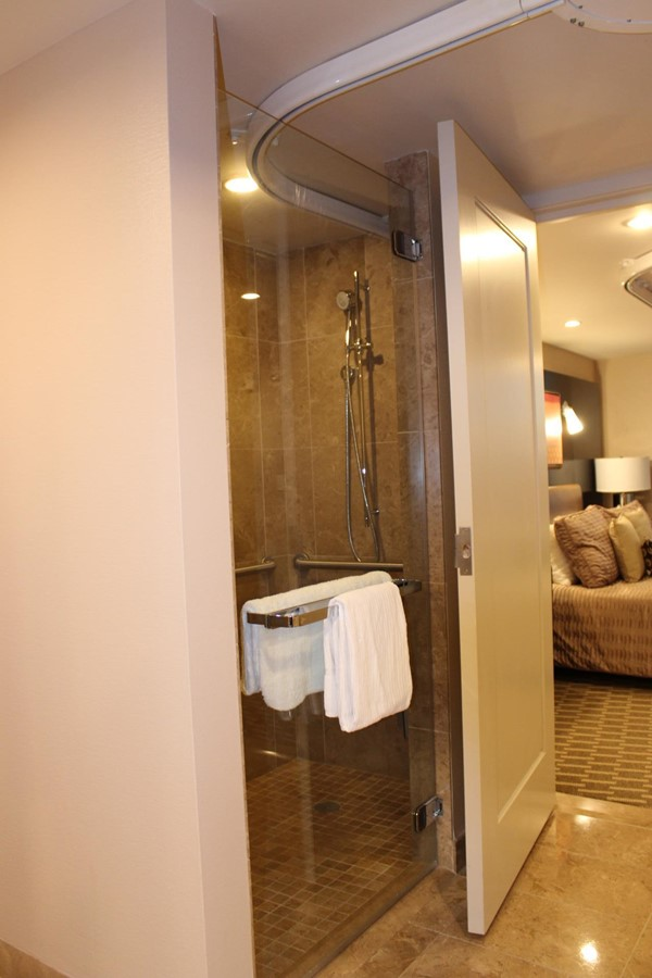 Picture of Aria Resort and Casino - Shower