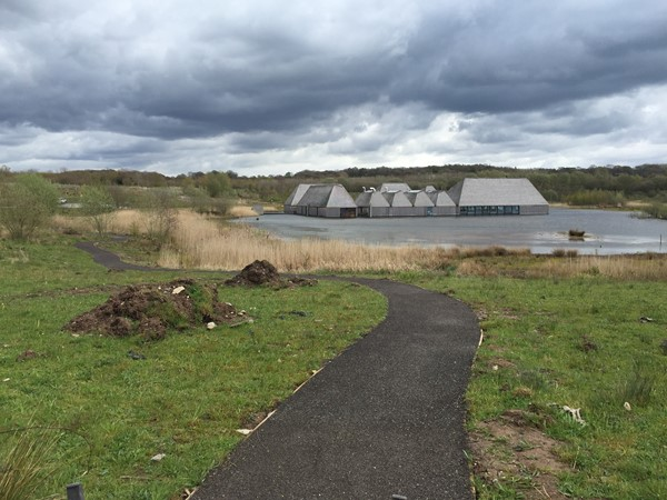 Picture of Brockholes Nature Reserve