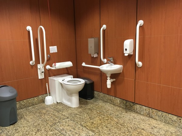 Inside accessible loo