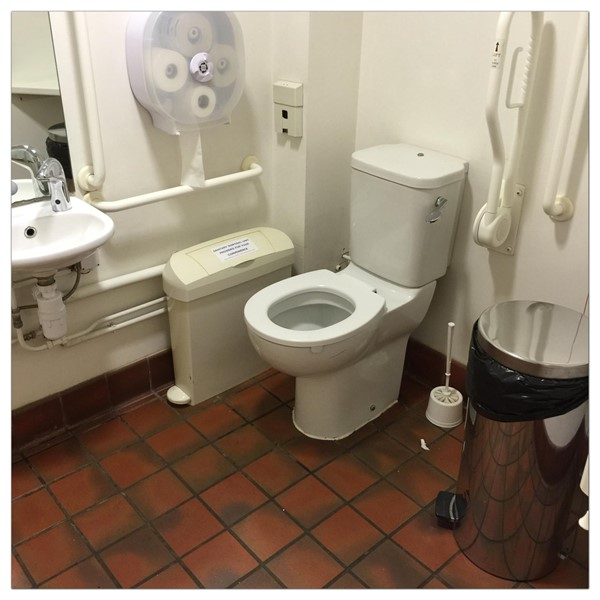 Toilet showing sink