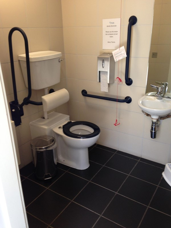 The accessible toilet.