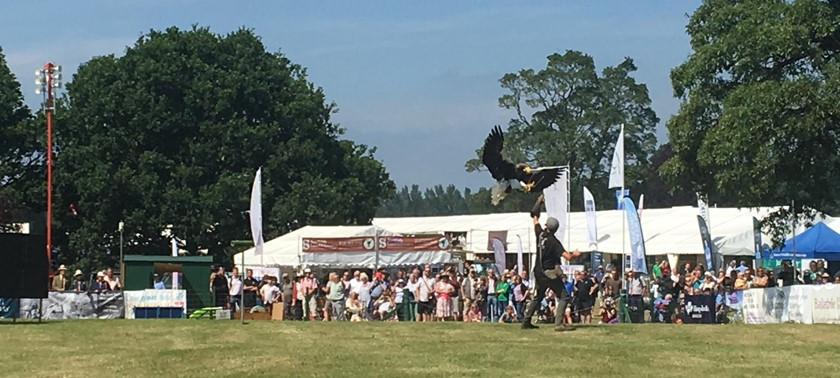 Scottish Game Fair at Scone Palace