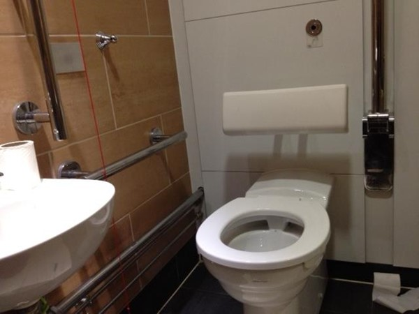 Photo of the toilet.