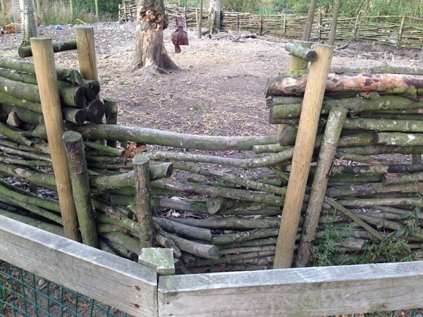 Picture of Blair Drummond Safari Park - Enclosure
