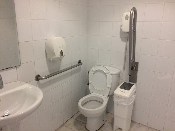 Photo of the accessible toilet.