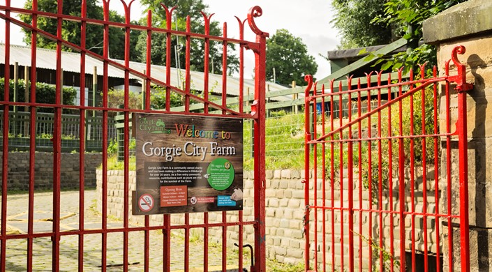 Gorgie City Farm