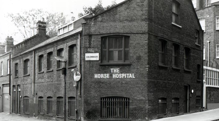 The Horse Hospital