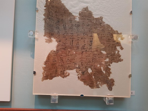 Actual papyrus and hyroglyphics
