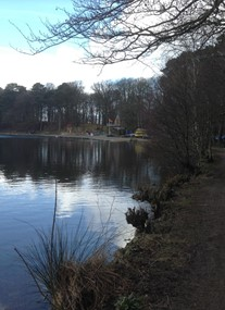 Talkin Tarn Country Park