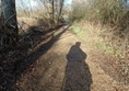 Picture of Blashford Lakes -shows the way the paths have been dressed to allow access for disabled people