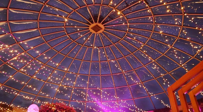Pleasance Dome at The Pleasance Potterow
