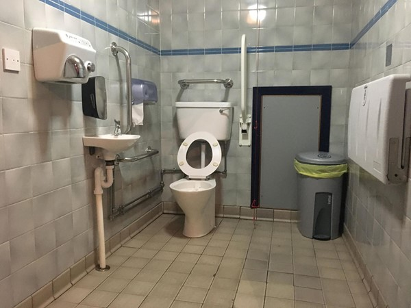 Image of the accessible toilet.