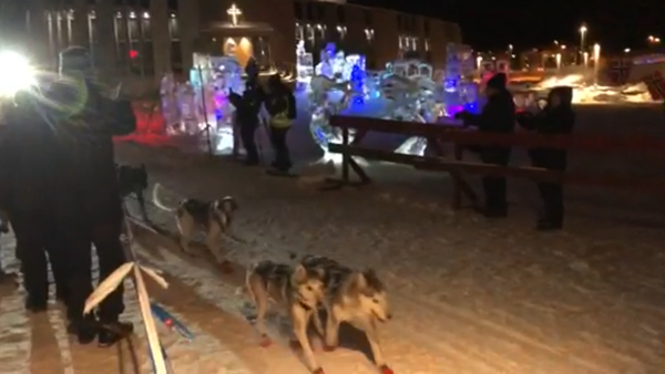 The winning team of the 1200k husky run. Note the wee red boots on the dogs, ice sculptures and Northern Lights Cathedral in background